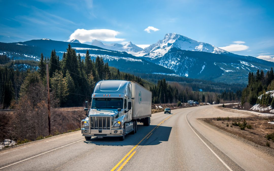 Is the ELD Mandate a Success?